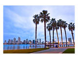 Palm Trees City San Diego Sign Art