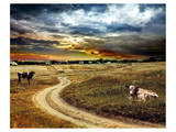 Road Field Stormy & Clouds Posters