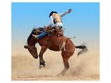 Bucking Rodeo Horse Art