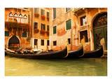 Traditional Venice gondola Posters