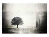 Vintage Picture with lone Tree Art
