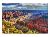 Grand Canyon North Rim Arizona Posters