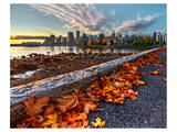 Leaves & Vancouver Downtown Prints