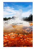 Castle Geyser Yellowstone Park Plakater