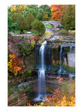 Webster's Falls in Hamilton Posters