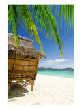 Bamboo Hut On A Tropical Beach Posters