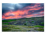 Sunset over Meadow withFlowers Posters