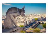 Chimera Notre Dame-Paris Posters