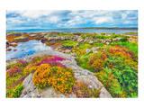Ireland Landscape Prints