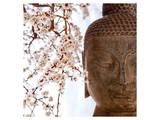 Buddha Face & Cherry Blossoms Prints