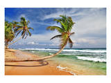 Wild Beautiful Beach Sri Lanka Print