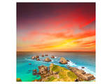 Nugget Point Coast at Sunset Posters