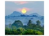 Sunrise Jungles of Sri Lanka Print