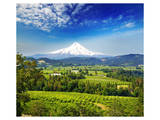 A Beautiful View Of Mount Hood Prints