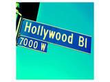 Closeup Hollywood Boulevard CA Poster