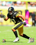 Troy Polamalu 2014 Action Photo
