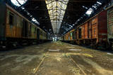 Cargo Trains in Old Train Depot Photographic Print by  svedoliver