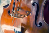Double Bass Photographic Print by  lachris77