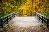 Wooden Bridge in the Autumn Park Photographic Print by  sborisov