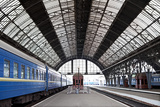 Railway Station with Trains Photographic Print by  Gladkov