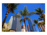 LA-Pershing Square Palm Tress Prints