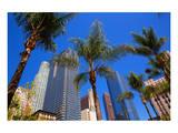LA-Pershing Square Palm Tress Print
