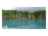 Blue Pond In Hokkaido Japan Poster
