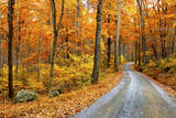 Winding Mountain Road in Autumn Photographic Print by  JuneJ