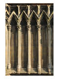 Gothic Cathedral Detail Paris Posters