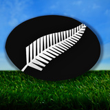 New Zealand Rugby Photographic Print by  koufax73
