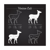 Venison Meat Cut Diagram Scheme Prints by  ONiONAstudio