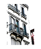 Bayonne Building Dog Photographic Print by Erwann Morel