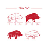 Boar Meat Cut Diagram - Elements Red on White Premium Giclee Print by  ONiONAstudio