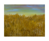 Dune Grasses Photographic Print by Dick Bourgault