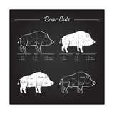 Boar Meat Cut Diagram - Elements Blackboard Premium Giclee Print by  ONiONAstudio