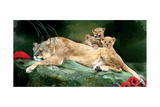 If You Were A Lion Cub Photographic Print by Nancy Tillman