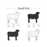 Lamb Cut Scheme - B&W Prints by  ONiONAstudio