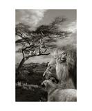 Löwen Fotodruck von Christine Sponchia