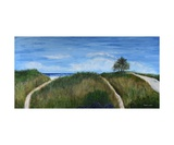 Dunes landscape panorama Photographic Print by Dick Bourgault