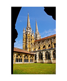 Bayonne Cathedral Photographic Print by Erwann Morel