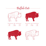 BUFFALO MEAT CUTS SCHEME Prints by  ONiONAstudio