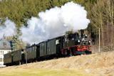 Steam Train, Steinbach - Johstadt, Germany Photographic Print by  phbcz