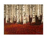 Red Carpeted Birch Forest Photographic Print by Dick Bourgault