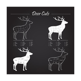 Deer Meat Cut Scheme Art by  ONiONAstudio