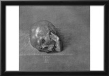 "Albrecht Durer (Study on the ""St. Jerome "": skull) Art Poster Print Prints"
