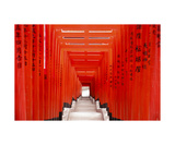 Torii Gates At Hie Shrine, Tokyo, Japan Photographic Print by Francesco Libassi