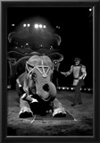 Bello and Big Apple Circus Elephant Archival Photo Poster Prints