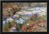 Childe Hassam The Water Garden Art Print Poster Photo