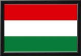 Hungary National Flag Poster Print Prints