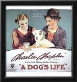A Dog's Life Movie Charlie Chaplin Edna Purviance Poster Print Posters